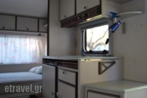 Camping Gythion Bay_lowest prices_in_Hotel_Peloponesse_Lakonia_Xifias