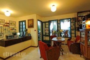 Villa Iokasti_best deals_Villa_Crete_Heraklion_Chersonisos