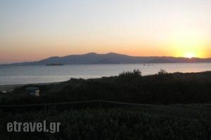 Aronis_best deals_Hotel_Cyclades Islands_Naxos_Naxos chora