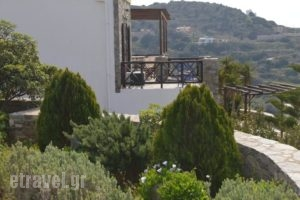 Syrou Lotos_lowest prices_in_Hotel_Cyclades Islands_Syros_Posidonia