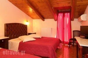 Hotel Varonos_holidays_in_Hotel_Central Greece_Fokida_Delfi