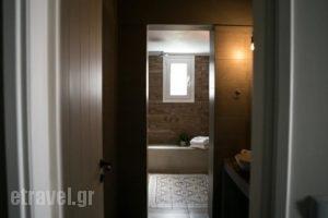 Galinio Boutique Apartments_lowest prices_in_Apartment_Peloponesse_Ilia_Pyrgos