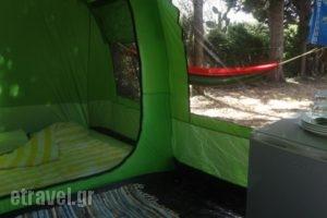 Camping Argostoli_accommodation_in_Hotel_Ionian Islands_Kefalonia_Kefalonia'st Areas
