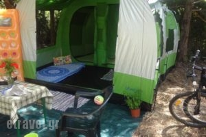 Camping Argostoli_lowest prices_in_Hotel_Ionian Islands_Kefalonia_Kefalonia'st Areas