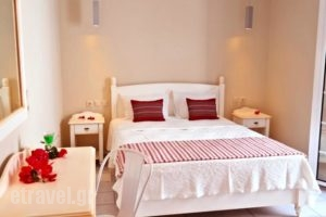 Vasiliki Studios_accommodation_in_Hotel_Cyclades Islands_Naxos_Naxos chora