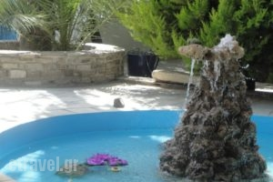 Cyclades Rooms_travel_packages_in_Cyclades Islands_Antiparos_Antiparos Chora
