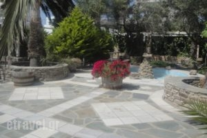 Cyclades Rooms_lowest prices_in_Room_Cyclades Islands_Antiparos_Antiparos Chora
