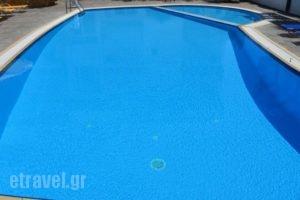 Elanios Zeus_best deals_Hotel_Macedonia_Thessaloniki_Thessaloniki City