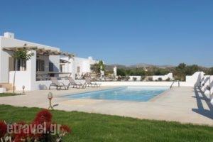 Sea & Olives Villas_lowest prices_in_Villa_Cyclades Islands_Naxos_Naxos chora