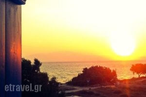 Thalassa Naxos_best deals_Hotel_Cyclades Islands_Naxos_Naxos chora