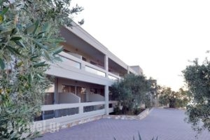 Aeolis Thassos Palace_best prices_in_Hotel_Macedonia_Kavala_Kavala City