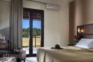 Hotel Simeon_holidays_in_Hotel_Macedonia_Halkidiki_Poligyros