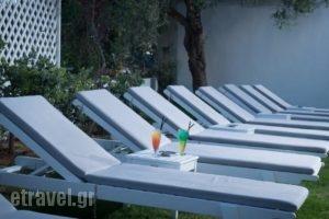 Fedra Apartments_lowest prices_in_Apartment_Crete_Heraklion_Chersonisos