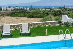 Sea & Olives Villas_best prices_in_Villa_Cyclades Islands_Naxos_Naxos chora