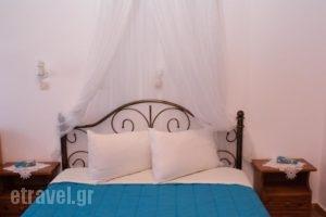 Stefanos Katsaros Studios_holidays_in_Hotel_Dodekanessos Islands_Patmos_Skala