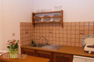 Stefanos Katsaros Studios_lowest prices_in_Hotel_Dodekanessos Islands_Patmos_Skala