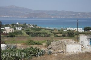 Kapares Studios_lowest prices_in_Hotel_Cyclades Islands_Naxos_Agia Anna