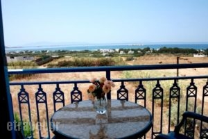 Kapares Studios_best prices_in_Hotel_Cyclades Islands_Naxos_Agia Anna