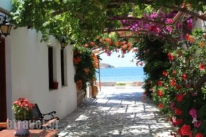 Mare Monte_best prices_in_Hotel_Cyclades Islands_Ios_Koumbaras