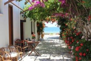 Mare Monte_best deals_Hotel_Cyclades Islands_Ios_Koumbaras