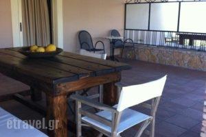 Fotis Rooms_best deals_Room_Peloponesse_Ilia_Pyrgos