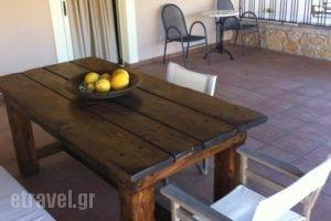Fotis Rooms_lowest prices_in_Room_Peloponesse_Ilia_Pyrgos