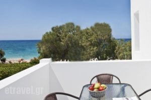 Naxoslosseo_lowest prices_in_Hotel_Cyclades Islands_Naxos_Naxos chora