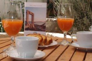 Zas Studios_best prices_in_Hotel_Cyclades Islands_Naxos_Naxos chora