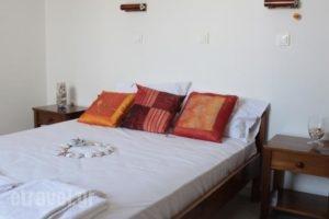 Alkion Studios_holidays_in_Hotel_Cyclades Islands_Naxos_Naxos chora