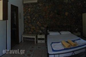 Elia Village_travel_packages_in_Aegean Islands_Lesvos_Plomari