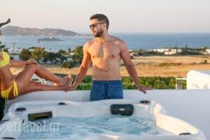 Blue Mare Villas_lowest prices_in_Villa_Cyclades Islands_Paros_Paros Chora