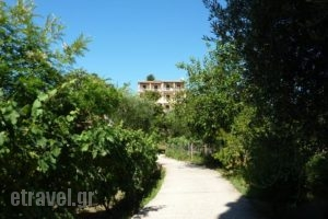 Emely Apartments_best deals_Apartment_Ionian Islands_Corfu_Corfu Rest Areas