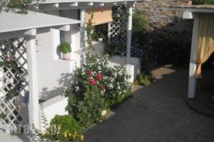 9 Muses Naxos_best deals_Hotel_Cyclades Islands_Naxos_Naxos chora