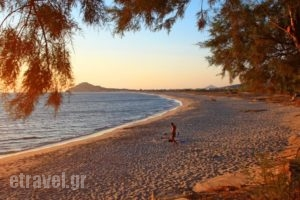 Thalassa Naxos_best prices_in_Hotel_Cyclades Islands_Naxos_Naxos chora