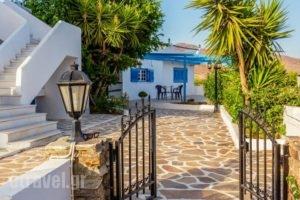 Villa Kelly Apartments_holidays_in_Villa_Cyclades Islands_Naxos_Naxos Chora