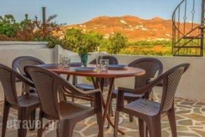 Villa Kelly Apartments_best prices_in_Villa_Cyclades Islands_Naxos_Naxos Chora