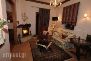 Margit'Suites Hotel_best prices_in_Hotel_Central Greece_Evritania_Korischades