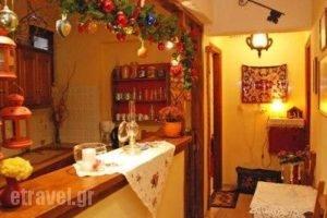 Egarsios Pension_best prices_in_Hotel_Central Greece_Viotia_Arachova