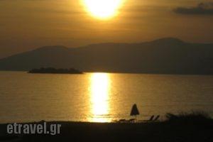 Aronis_best prices_in_Hotel_Cyclades Islands_Naxos_Naxos chora