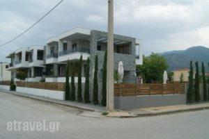 Chrysalis_lowest prices_in_Hotel_Macedonia_Thessaloniki_Thessaloniki City