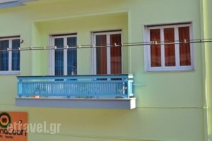 Chameleon Youth Hostel_accommodation_in_Hotel_Central Greece_Attica_Nikaia