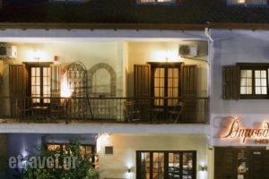 Dimosthenis_accommodation_in_Hotel_Macedonia_Pella_Giannitsa