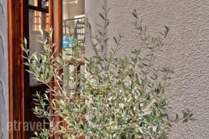 Golden Beach Studios_lowest prices_in_Hotel_Cyclades Islands_Naxos_Naxos chora