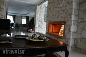 Diamond River Resort' Spa_best prices_in_Hotel_Macedonia_kastoria_Argos Orestiko