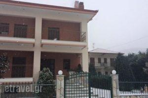 Karipidis Hotel_holidays_in_Hotel_Macedonia_Florina_Aetos