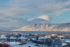 Karipidis Hotel_best deals_Hotel_Macedonia_Florina_Aetos
