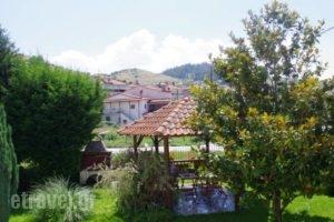 Karipidis Hotel_best prices_in_Hotel_Macedonia_Florina_Aetos