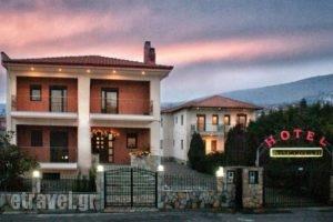 Karipidis Hotel_accommodation_in_Hotel_Macedonia_Florina_Aetos