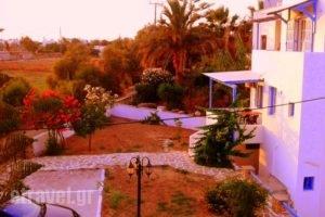 Villa Kelly Apartments_best deals_Villa_Cyclades Islands_Naxos_Naxos Chora