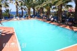 Palm Bay Hotel   hollidays